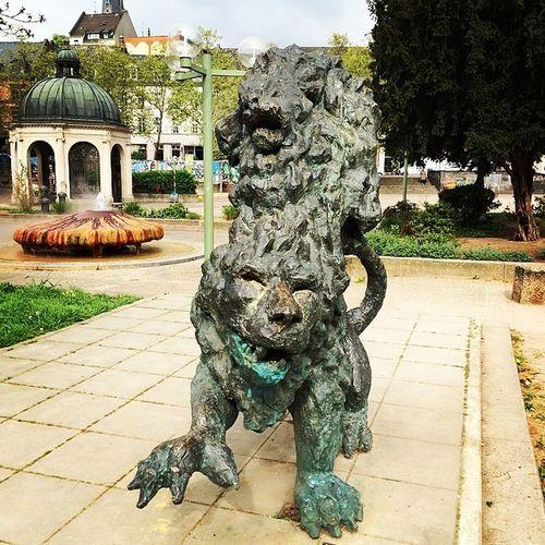 Wiesbaden Kochbrunnen Löwenmähne Virnich