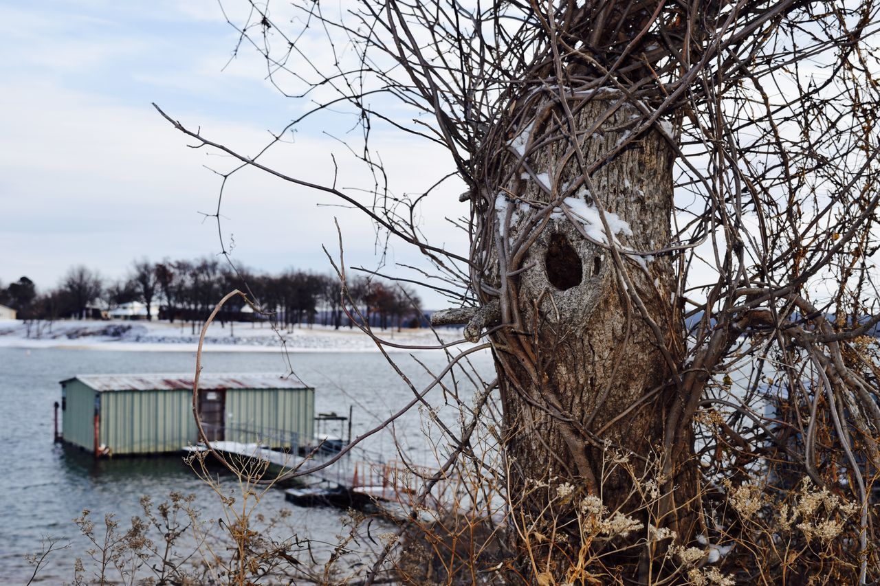 Bare Tree Beauty In Nature Boat Dock Branch Cold Temperature Day Frozen Lake Lake Eufaula Nature No People Outdoors Sky Snow Tranquil Scene Tranquility Tree Water Winter