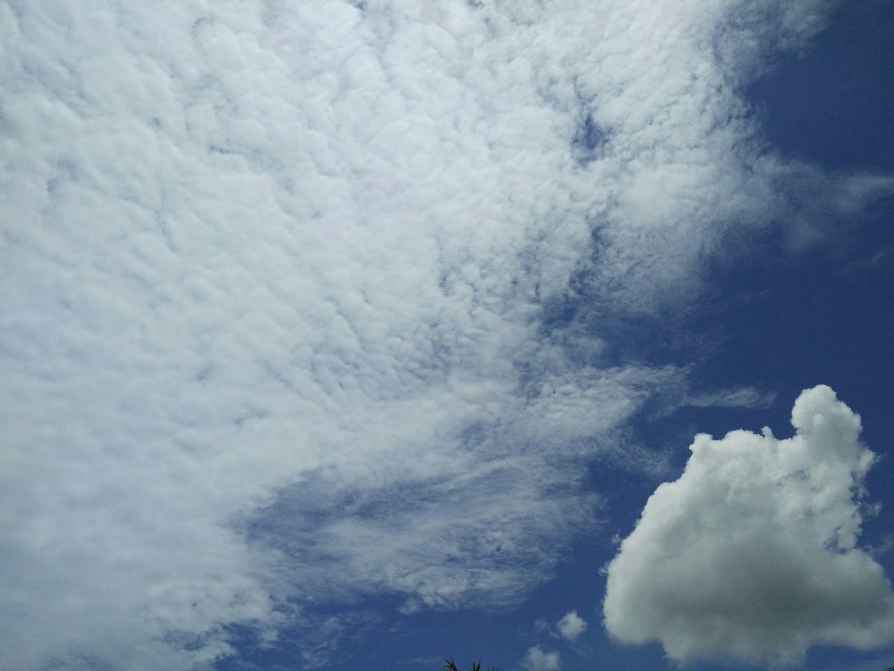 cloud - sky, nature, beauty in nature, backgrounds, sky, cloudscape, sky only, low angle view, scenics, white color, full frame, no people, weather, tranquility, day, outdoors, tranquil scene