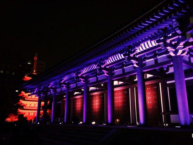 博多ライトアップウォーク2012 / HAKATA Light Up Walk 2012 Light Up Five-storied Pagoda Temple