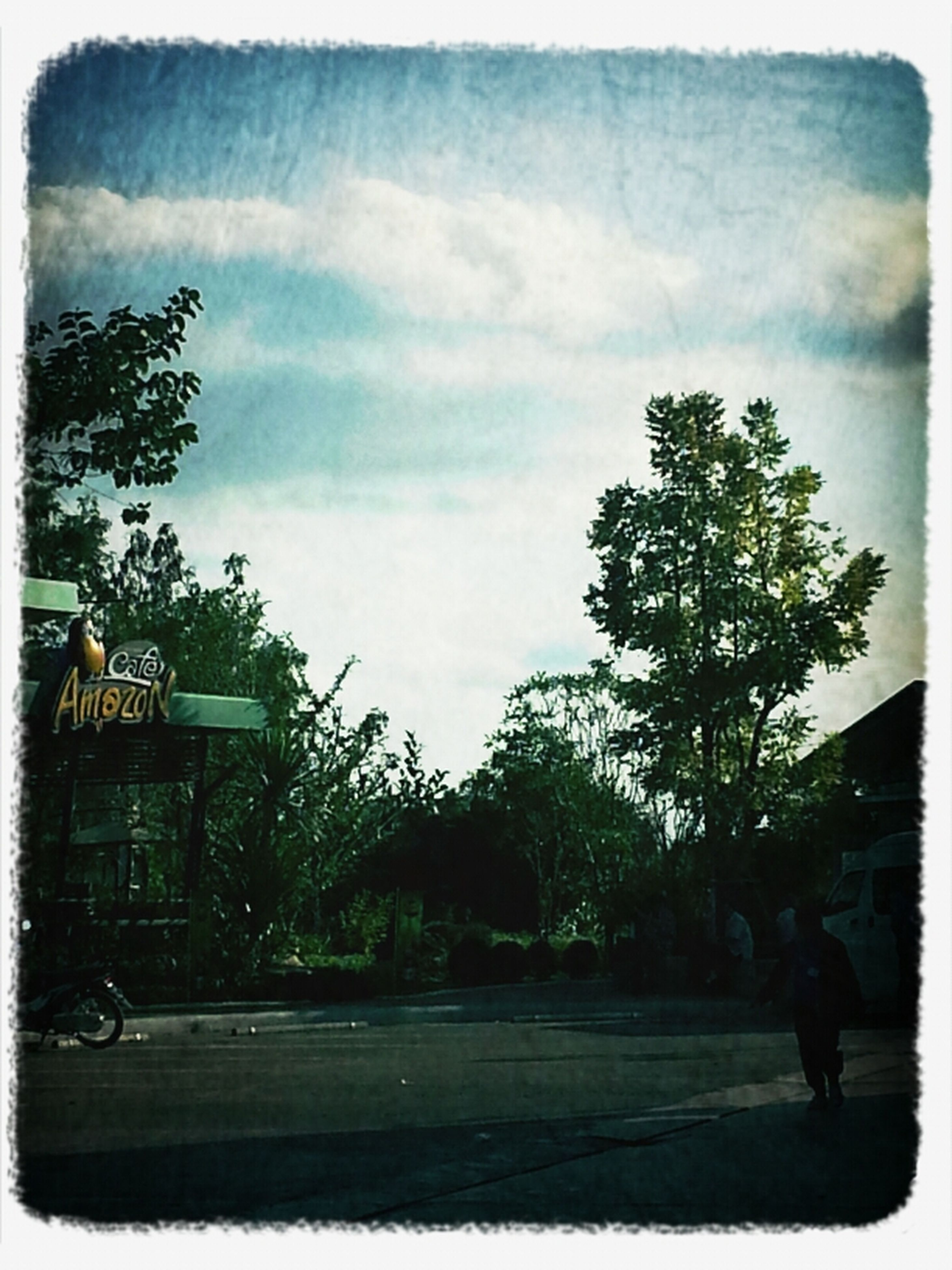 transfer print, auto post production filter, tree, building exterior, sky, architecture, built structure, men, transportation, street, road, lifestyles, walking, cloud - sky, leisure activity, land vehicle, day, full length, person
