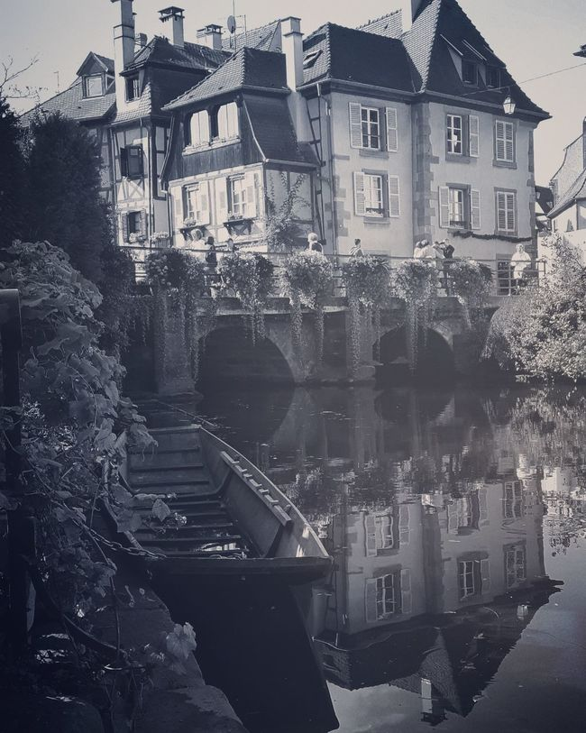 Architecture Building Exterior Built Structure Canal City City Life Colmar Colmar, Alsace, France Day Foggy High Angle View History No People Old City Old City Streets Old Town Outdoors Reflection Reflections In The Water Residential District River Standing Water Tree Water Waterfront