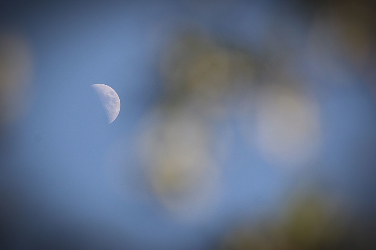 Bokeh Moon Adore Make A Wish Wanderlust Art In Nature EyeEm Nature Lover Nature_collection Sky Moon Dreams