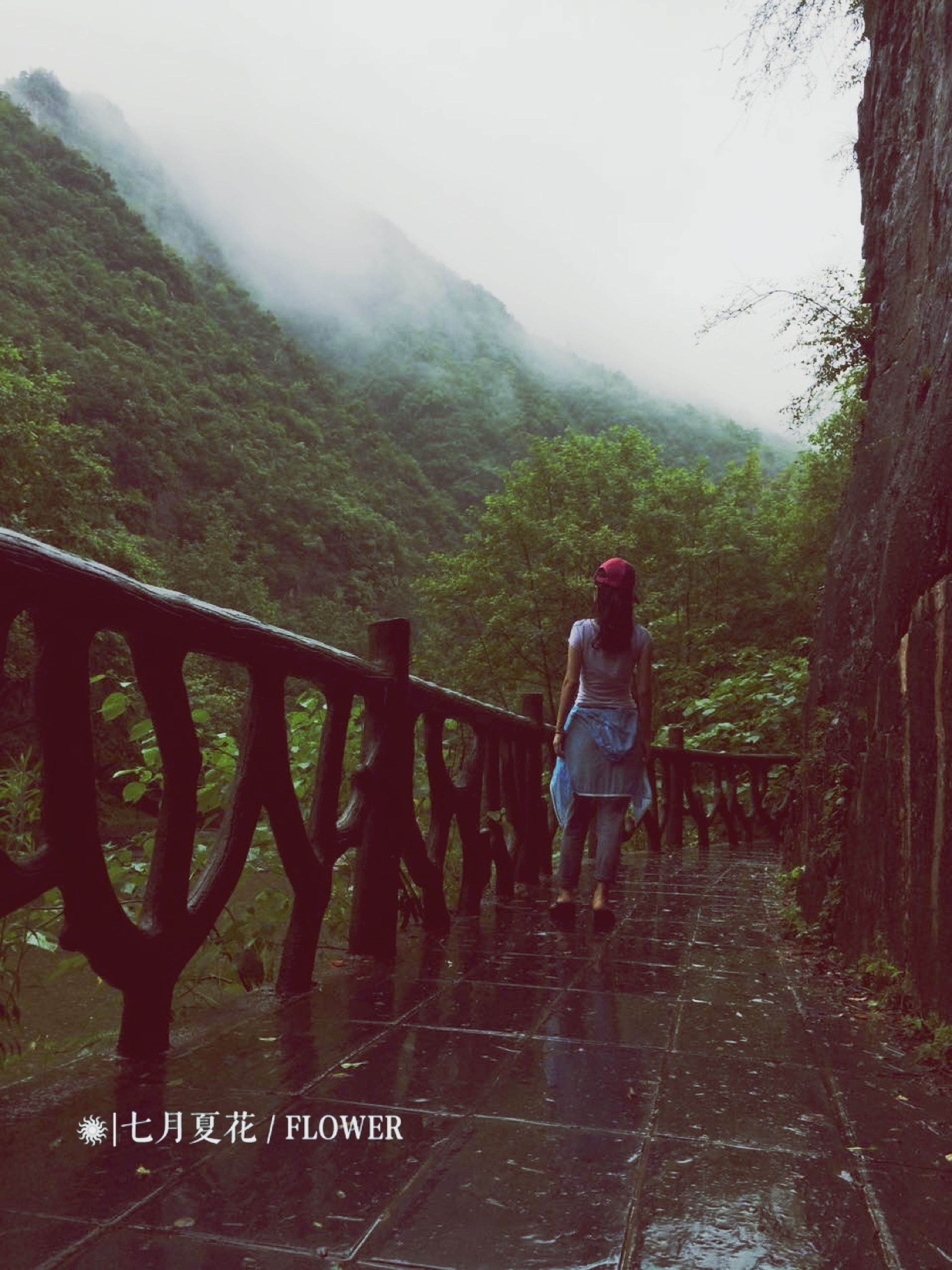 mountain, lifestyles, full length, leisure activity, railing, rear view, tree, water, casual clothing, tranquility, nature, scenics, beauty in nature, tranquil scene, standing, footbridge, fog, forest