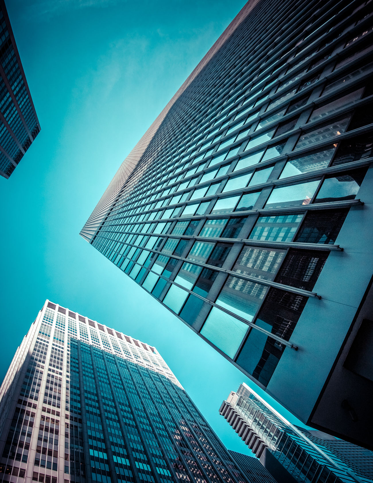 Diagonal Architecture Blue Building Exterior Built Structure City Day Growth Low Angle View Modern No People Outdoors Reflection Sky Skyscraper Tall The Architect - 2017 EyeEm Awards Tower Window