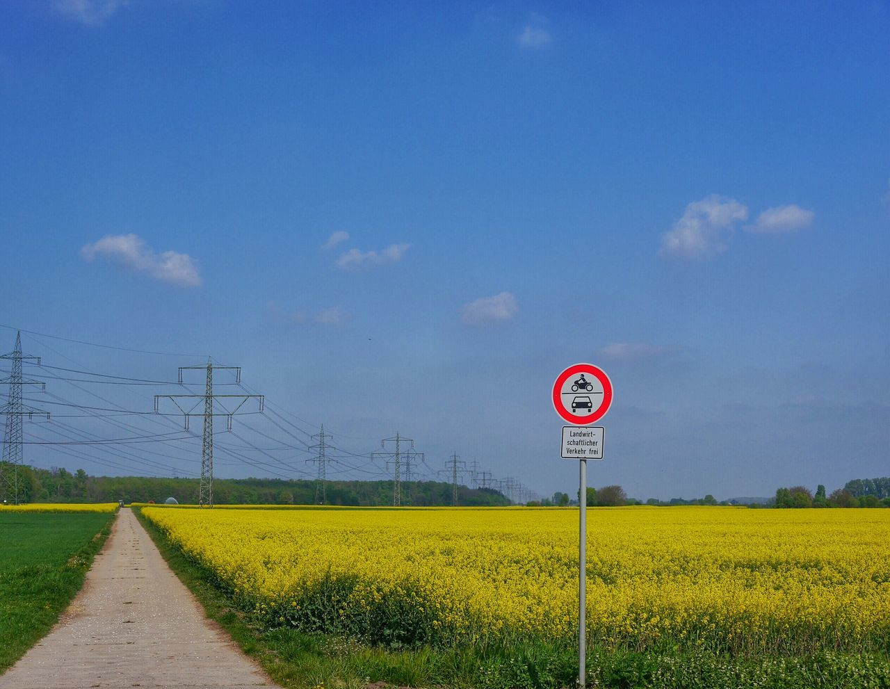 Beautiful stock photos of sunny, Agriculture, Beauty In Nature, Bensheim, Cable