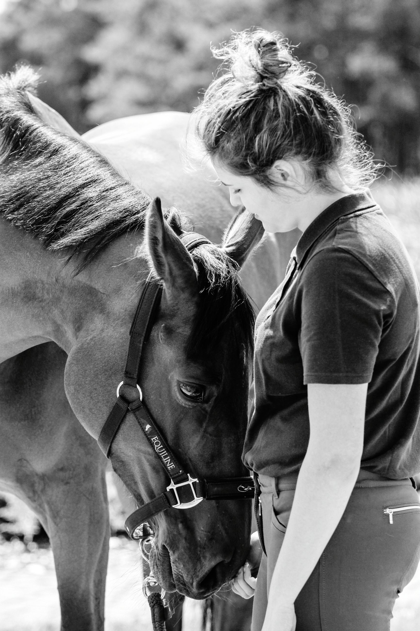 horse, domestic animals, mammal, animal themes, one animal, livestock, bridle, real people, focus on foreground, outdoors, day, standing, lifestyles, young adult, one person, young women, people