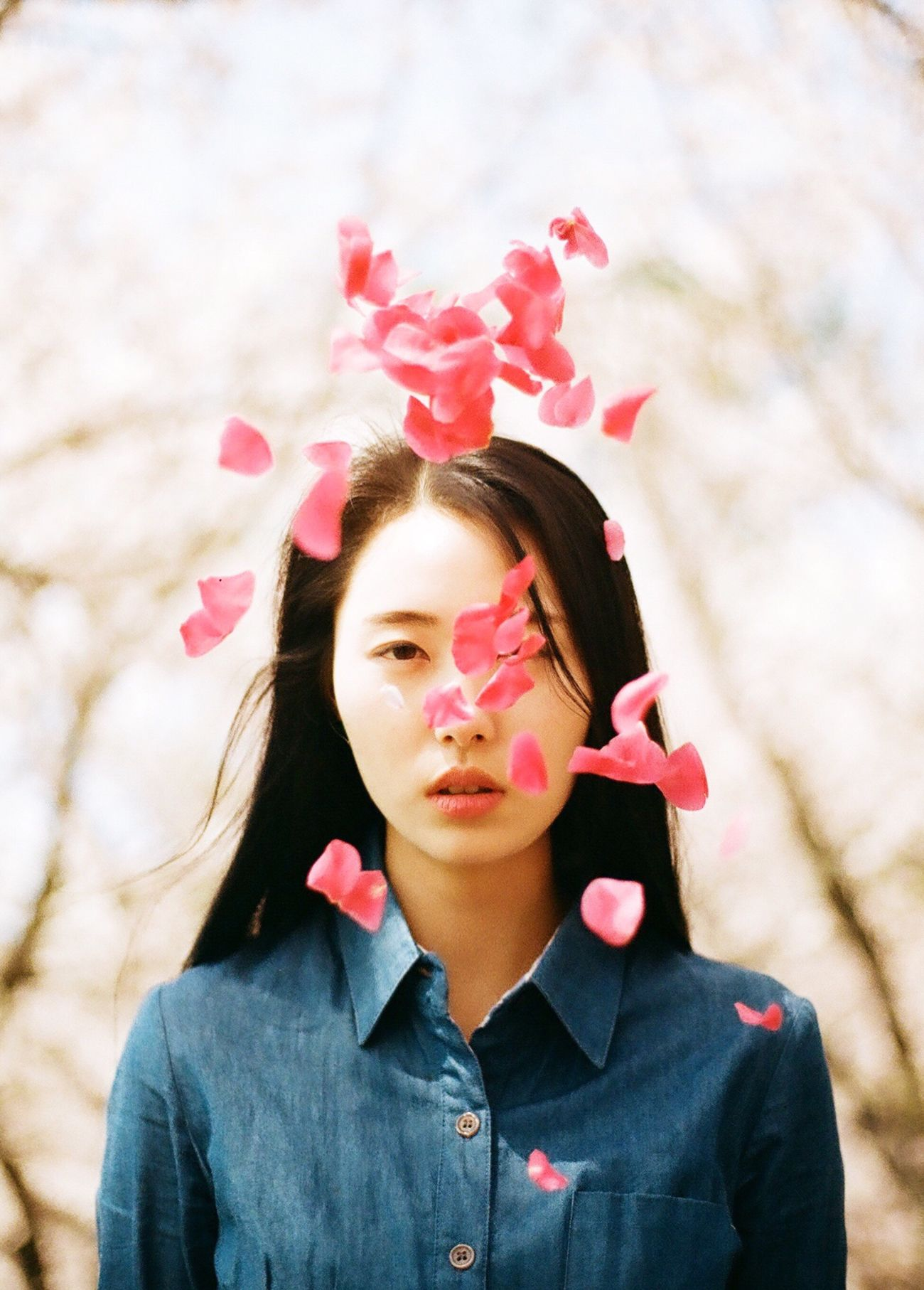 Film Filmisnotdead Analogue Photography Capture The Moment Daylight Spring Flowers Red Flower Blowing Pink Color Nature Korea Portrait Eye