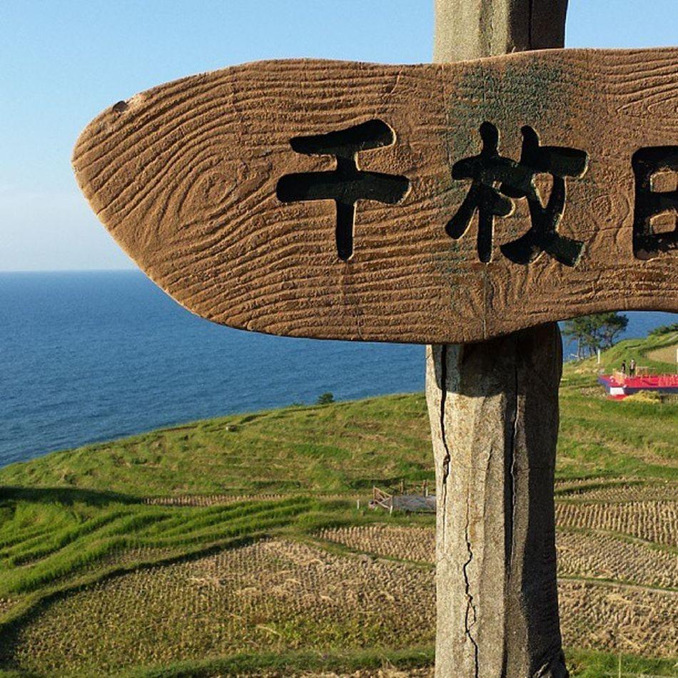 千枚田、海がきれい輪島