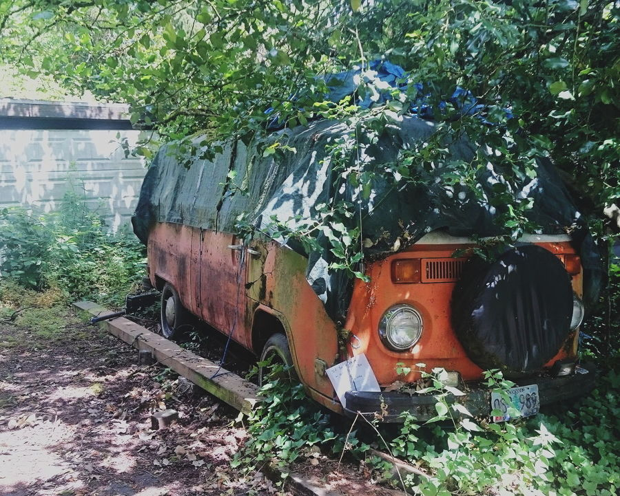 Growth Nature Taking Over Overgrown VW Bus VW Abandoned Abandoned Places