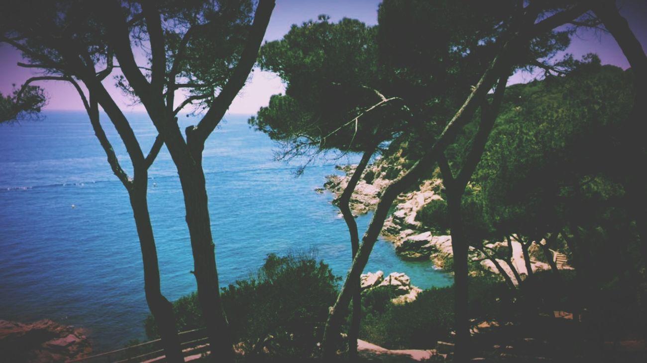 Remember Lloret del Mar España🇪🇸