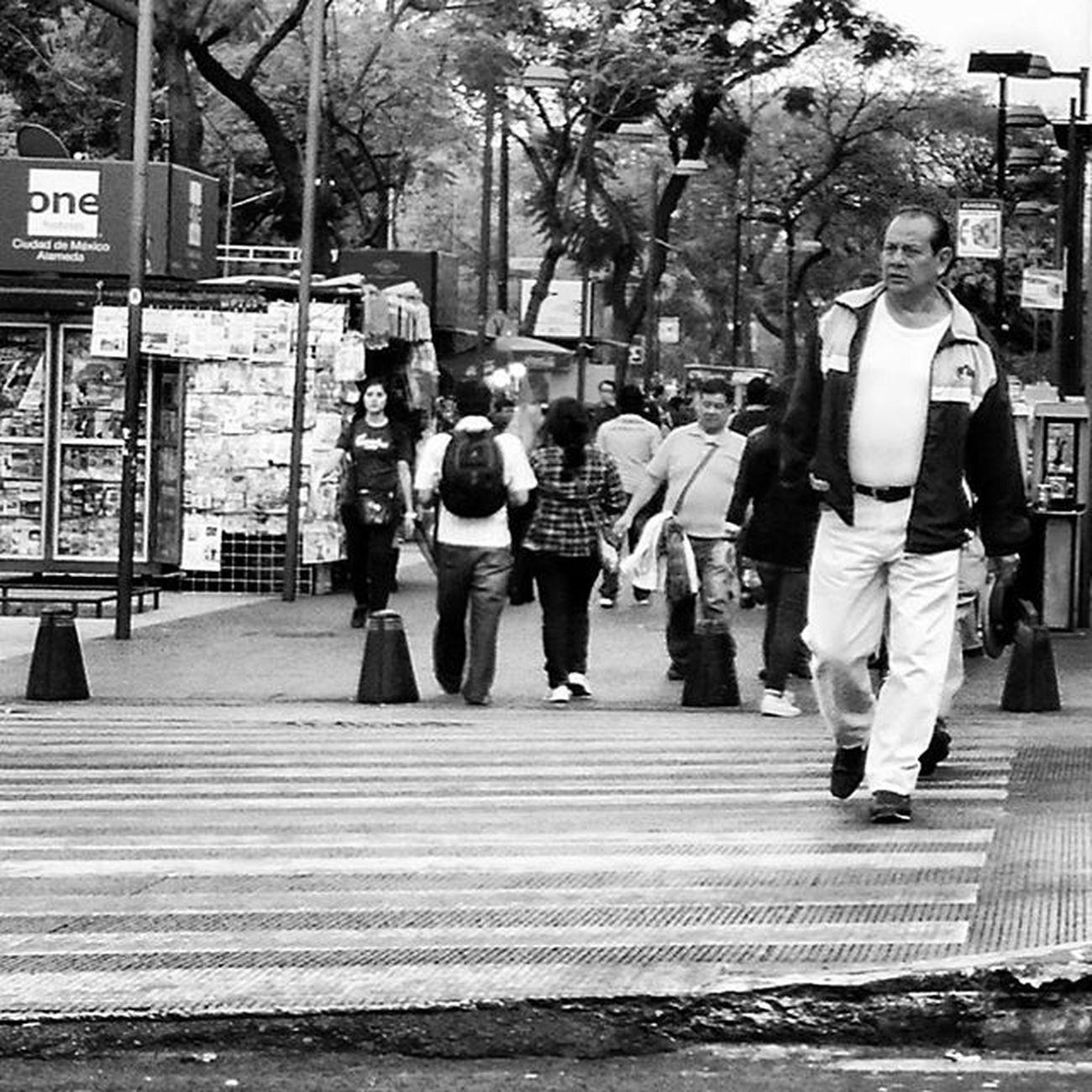 Walking in Mexico City IX Streetlife Streetphotography Urbanlife Mobilephotography Mexicocity  Blackandwhite Bw