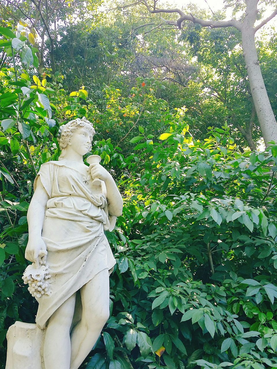 statue, human representation, male likeness, sculpture, female likeness, day, tree, outdoors, no people, growth, nature