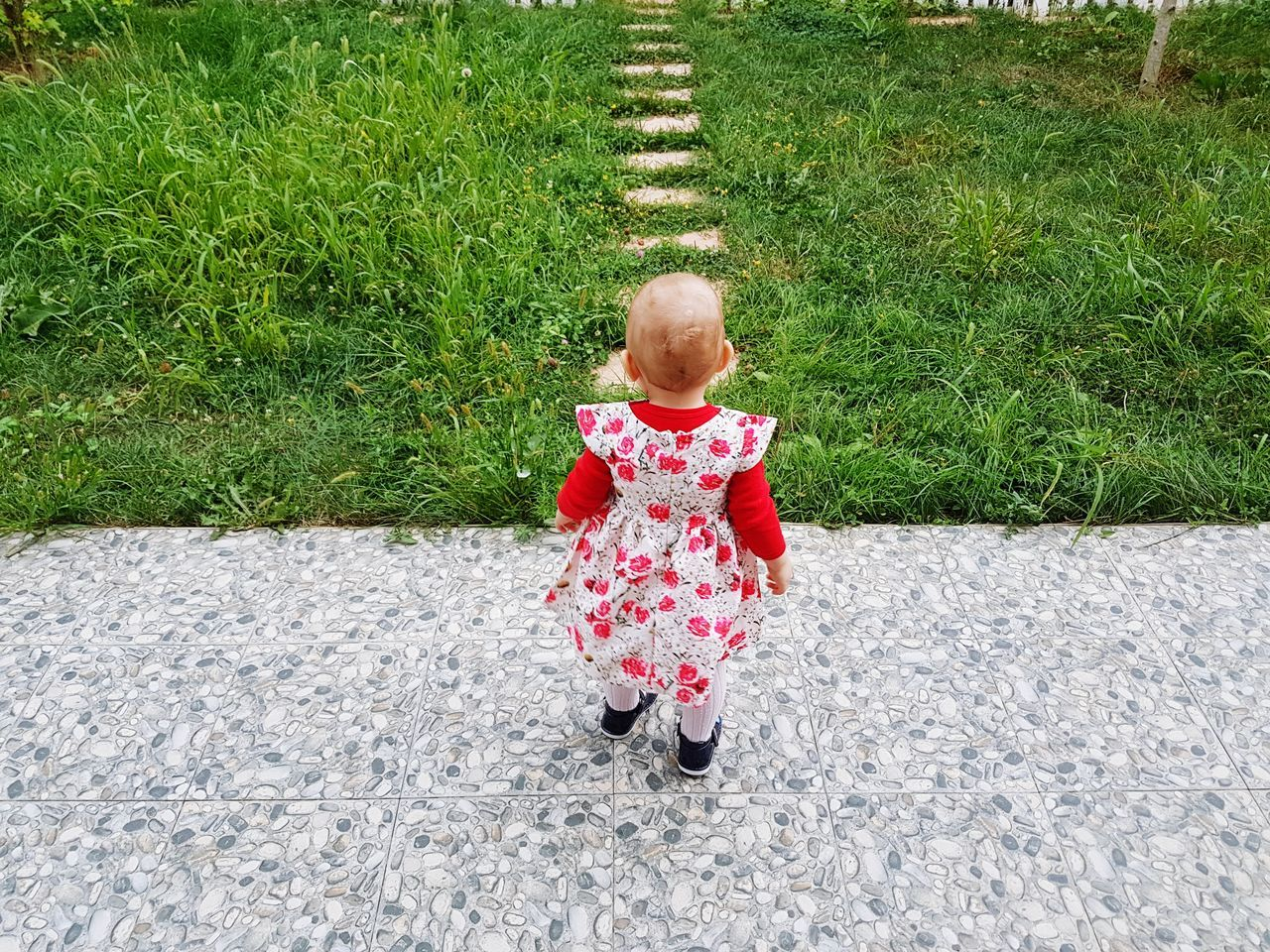 Rear View Of Girl By Grass