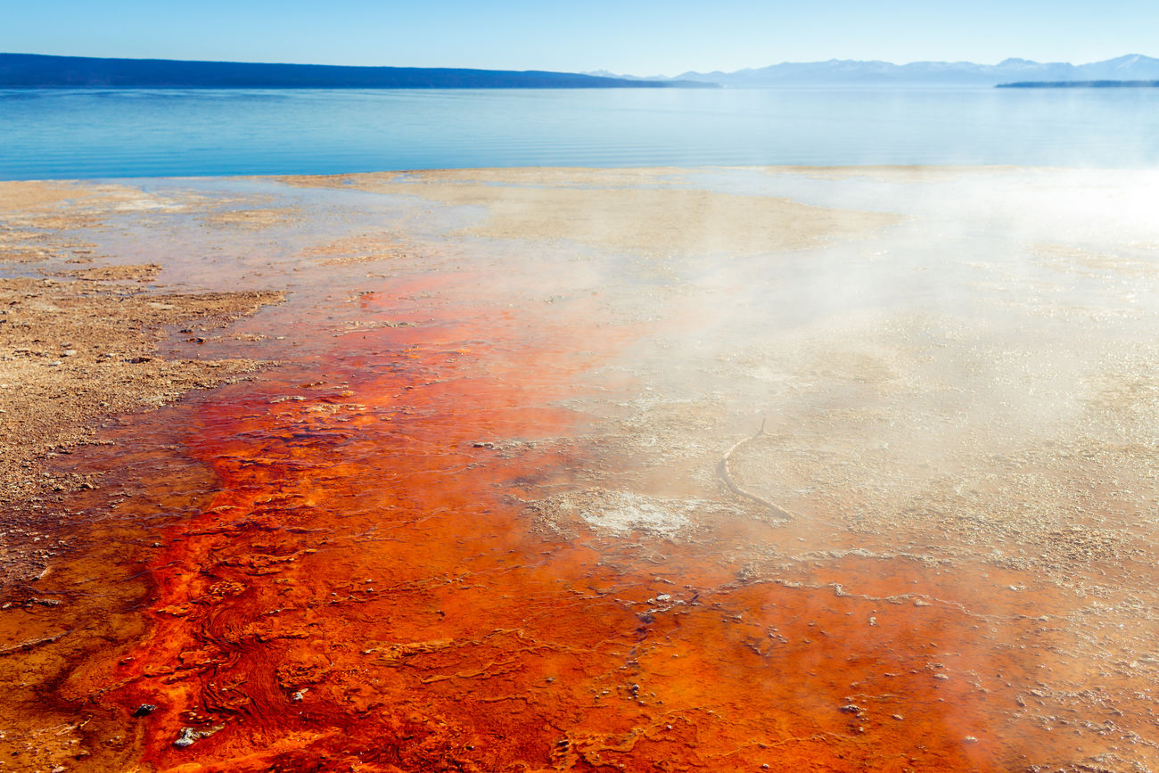 Bacteria Mat Beach Beauty In Nature Coastline Colorful Geothermal Fields Morning Light Nature Non-urban Scene Scenics Tranquil Scene Travel Destinations West Thumb Geyser Basin Wyoming Yellowstone Lake Yellowstone National Park
