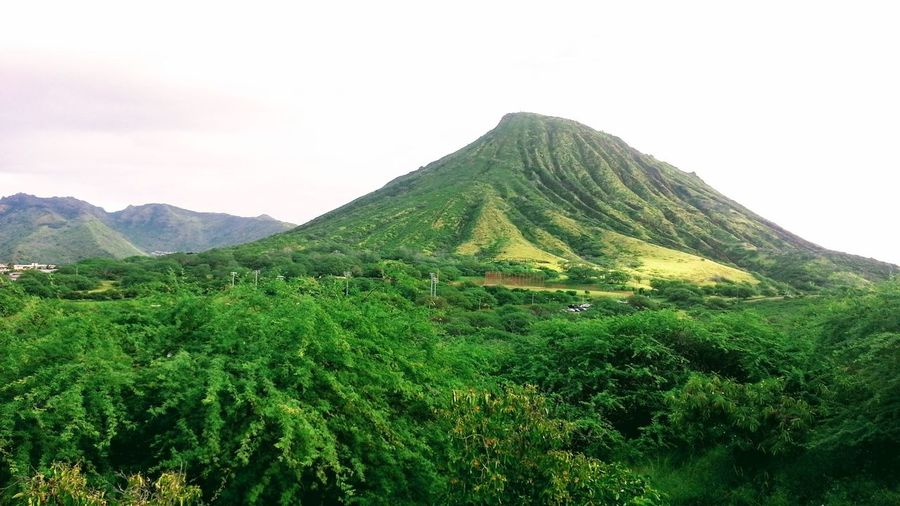 Oahu Hawaii Koko Head  Outdoors Sky Grass Green Color Tropical Scenics Lush Foliage Landscape No People Tranquility Tropics Tropical Island Day The Week On EyeEm Island Of Oahu, Hawaii Been There. Lost In The Landscape Second Acts Perspectives On Nature Oahu / Hawaii An Eye For Travel
