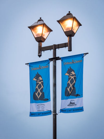 Yukon Quest 2017 Banner Blue Canada Cold Temperature Conquest Day Festival Flags Happening Illuminated Lantern Lanterns Lighting Equipment No People Object Objects Outdoors Sled Dog Sled Dog Race Snow Sport Event Winter Yukon Quest Yukon Territory