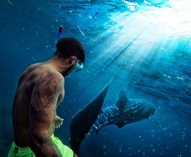 The world is fantastic! Underwater UnderSea Sea Life Scuba Diving Exploration Water Anima Gopro Connected By Travel Goprohero5black Gopro Shots Personal Perspective Goodlife Ocean View Adults Only Beach Second Acts EyeEmNewHere Perspectives On Nature