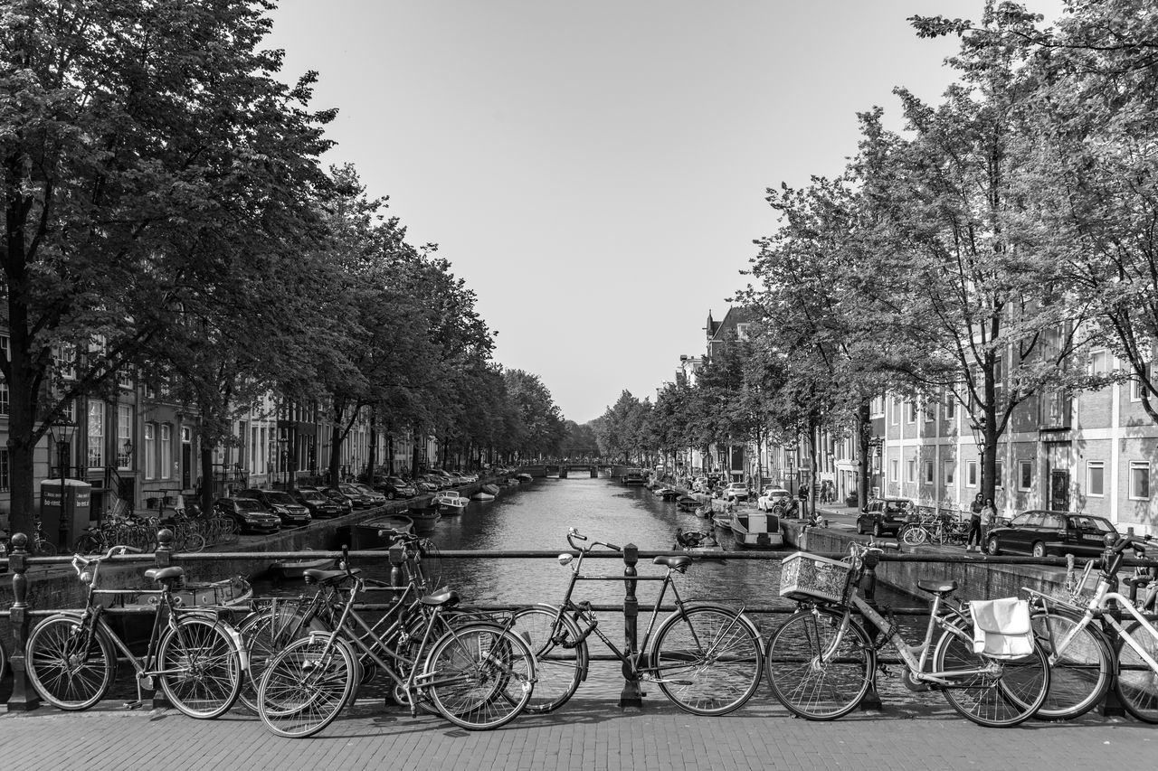 Canals of Amsterdam, Netherlands Amsterdam Amsterdam Canal City Keizersgracht Prinsengracht Architecture Bicycle Canal Day Flower Herengracht No People Outdoors Tree Water Waterfront