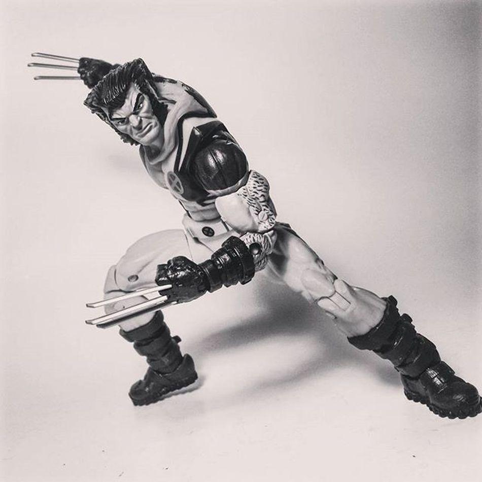 Marvel Marvellegends Marvelcomics Wolverine Logan Thebestatwhathedoes Xmen Mutant Toys Toyphotography Toypizza Toysarehellasick Toycollector Toycommunity Toycollection Thefigureverse