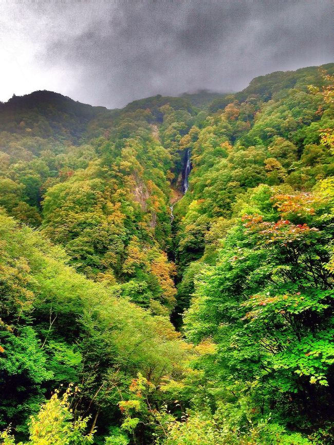 Nature EyeEmBestPics Beauty In Nature Mountain Tree Scenics Tranquil Scene Tranquility Lush Foliage Green Color Mountain Range Growth Beauty In Nature Nature Sky Cloud - Sky Non-urban Scene Outdoors Remote Greenery Valley WoodLand Majestic 長野県 高山村 松川渓谷 八滝 2016.10.10.iPhone5にて撮影📱 紅葉はまだ早いですね!色付き始めす!🍁🍂