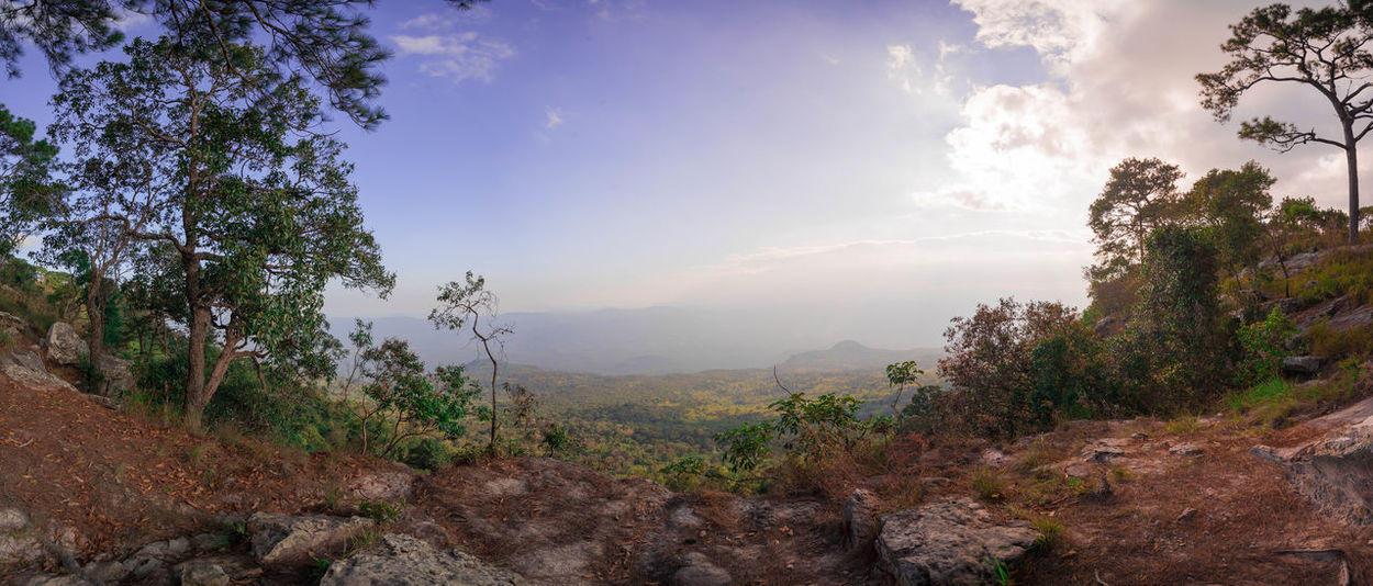 The 7 shot panorama intersection of 2 province in Thailand Such as Lei Phetchaboon Panoramashot Phu Kradueng National Park Thailand Cliff Lei Mountain Range Park Point Of View EyeEm Ready
