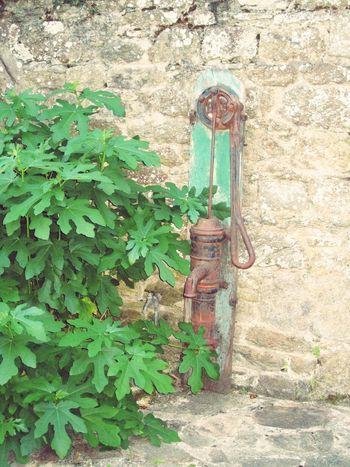 Water Pump Water Pumps Old