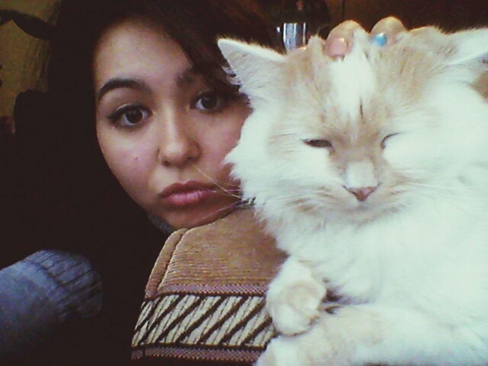 With Cat Boring