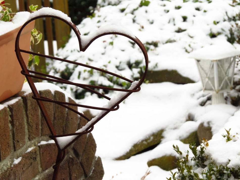 Cold Cold Days Cold Heart Cold Temperature Frigid Heart Heart Of Ice Heart Of Stone Heartbroken Heartshape Heartshaped Hibernation Icecold Icy Icy Day Love No Love Relationship Snow Snow Day Snowing Snowy Winter Winter Wonderland Wintertime