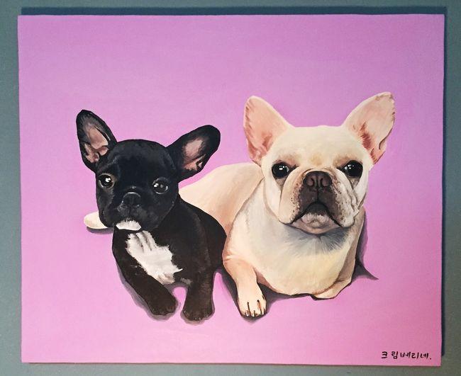 My Puppy ❤ Frenchbulldog Cream Berry I Love My Dog