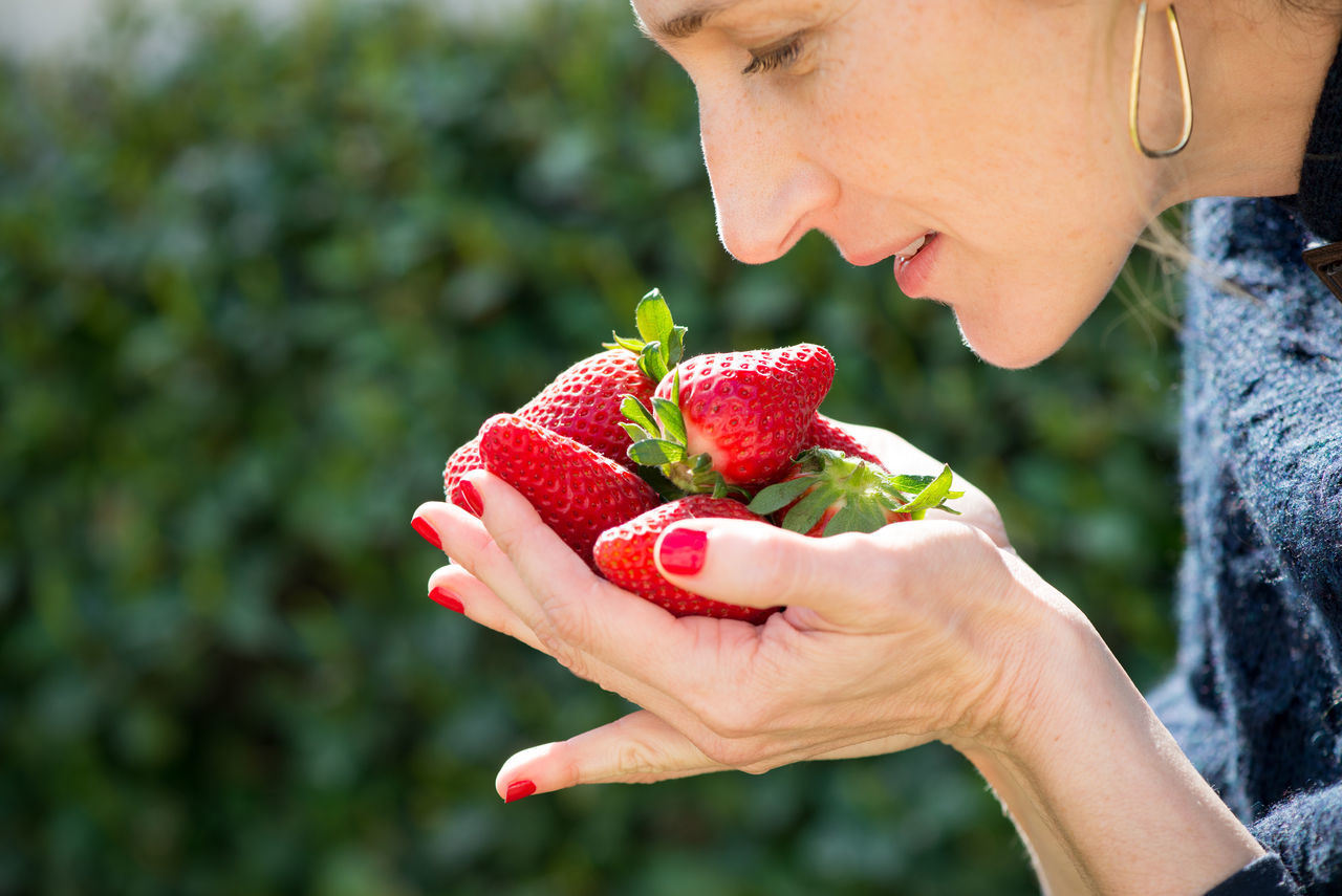 Smelling the strawberries Close-up Day Food Fresh Picked Freshness Fruit Healthy Eating Healthy Lifestyle Holding Hands Human Body Part Juicy Nature One Person One Woman Only Outdoors Red Red Nails Scented Smellsgood Springtime Strawberry Summer Women