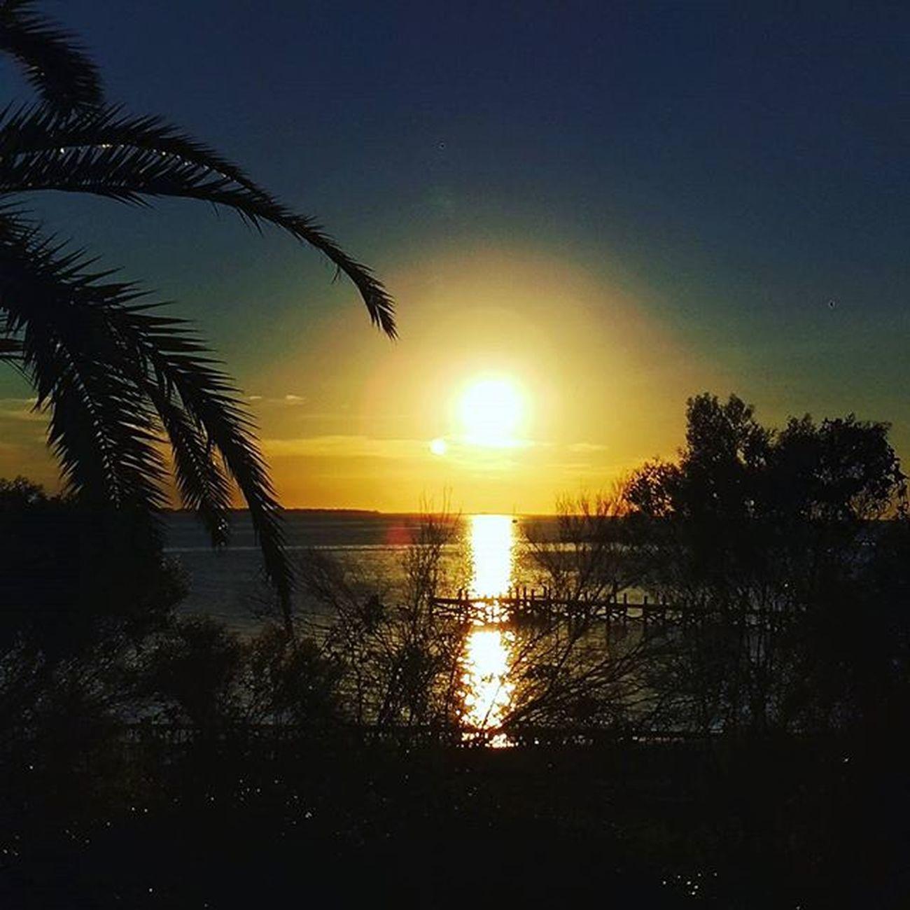 Sunset Trees Navarrebeach Navarre LoveFl Emeraldcoast Emeraldcoasting HTCOneM9 Htconelife Oneography 20 .7mp @htc @HTCUSA @HTC_UK @HTCelevate @HTCMEA @HTC_IN @HTCIreland @HTCCanada @HTCMalaysia @htcsouthasia @htcfrance TeamHTC @sharealittlesunshine @pureflorida Beachlife Reflection