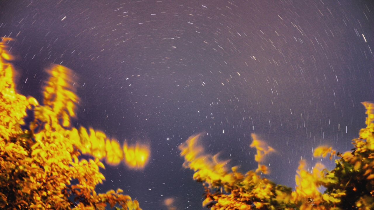 Night Star - Space Nature No People Astronomy Long Exposure Outdoors Motion Beauty In Nature Water Constellation Close-up Star Trail Galaxy Space Mammal Polaris Photography Photooftheday Photooftheweek Turkey Turkeyphotooftheday Turkishfollowers