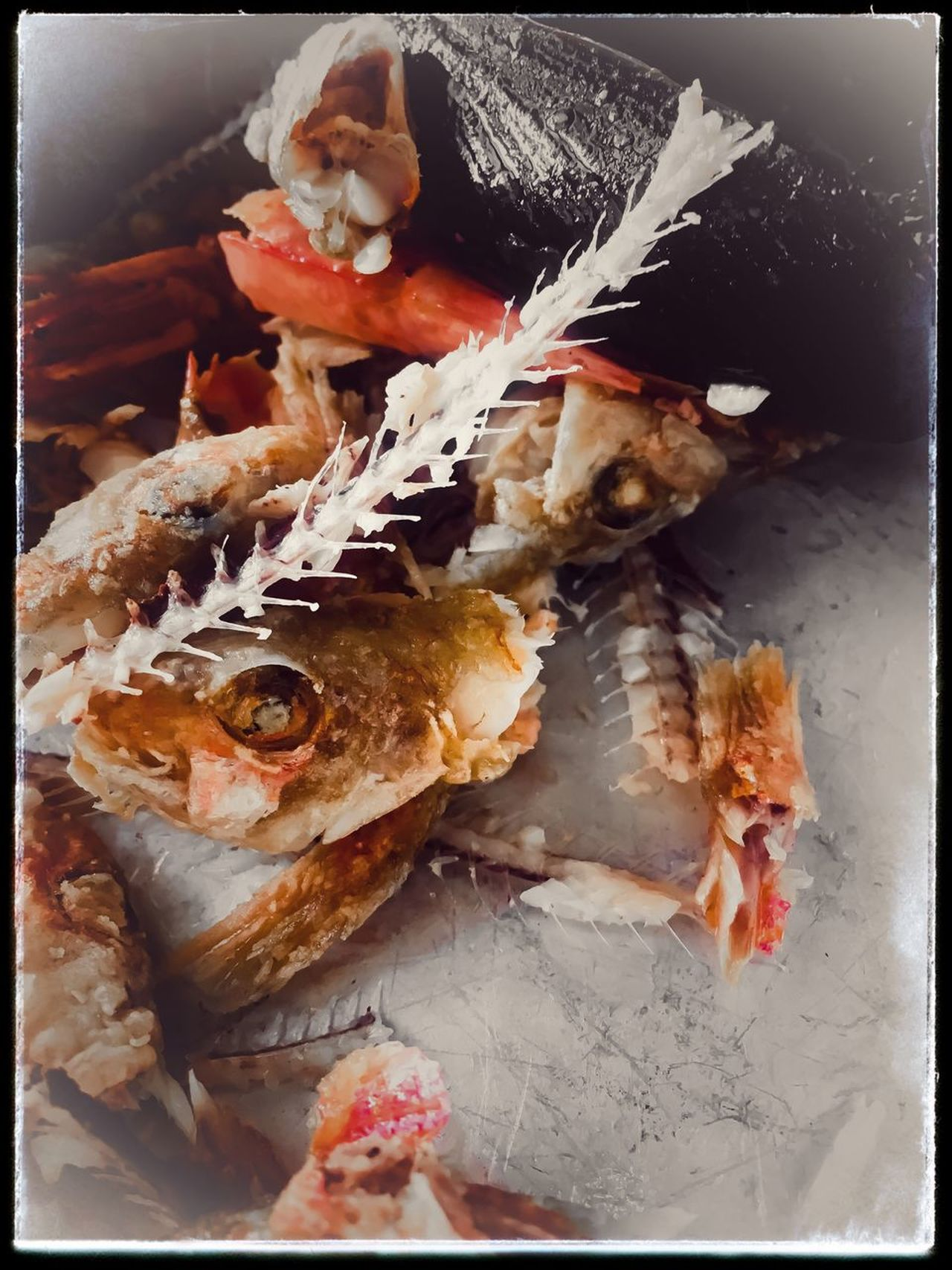 EyeEmNewHere Seafood Food And Drink Fish Food Fish Bones Meal Dinner Jaffa Fish Plate Discarded Carcass Fish Heads White Fish Eating Eyes Fish Eyes Garbage HEAD Indoors  No People Healthy Eating Close-up Ready-to-eat Day