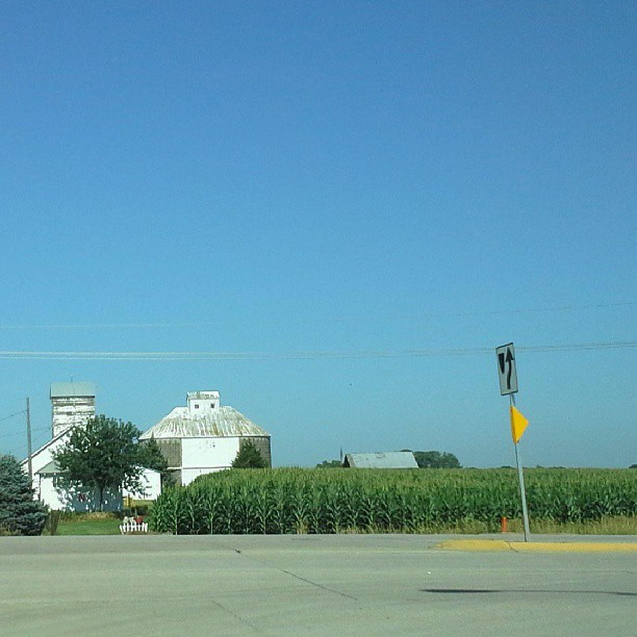 Highway Corn Roadtrip Farm Landscapes Nofilter Barns Bluesky Gretna Royalsnappingartists Rsa_rural Ig_ruralamerica Rsa_country Filthyfarms Almaproject Landscapealma Shotonthefly GretnaNebraska Almalandscape