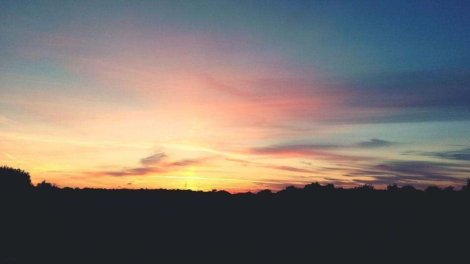 By Leesa Morris Photosofrm15 South Ockendon Belhus Woods Country Park Sunset #sun #clouds #skylovers #sky #nature #beautifulinnature #naturalbeauty #photography #landscape Walking The Dog