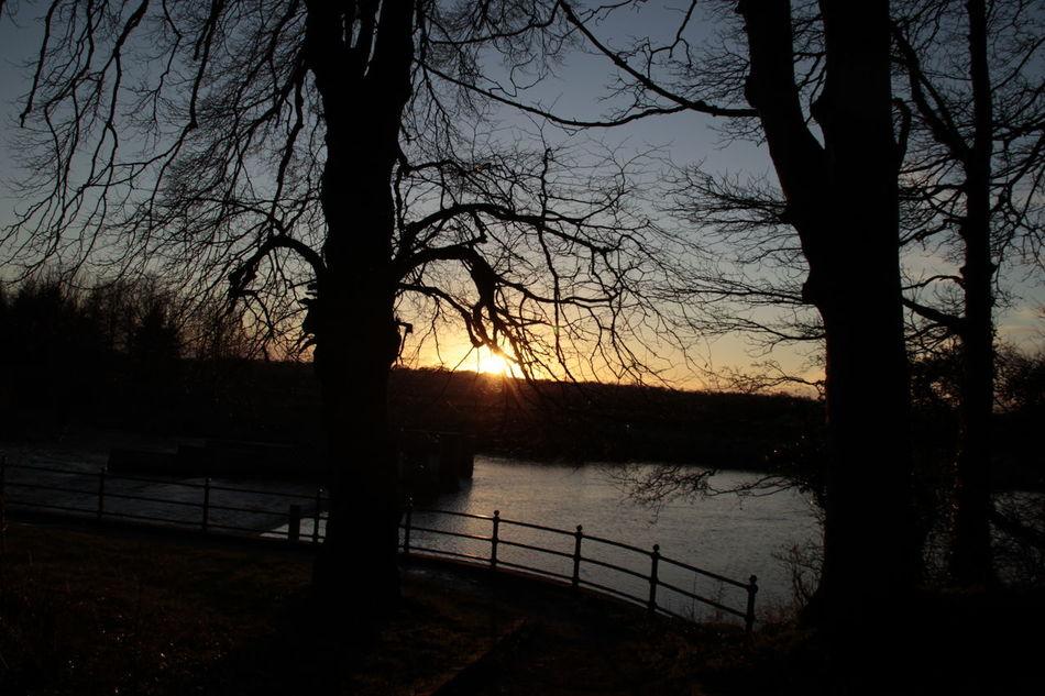 Sun set Silloette And Sky