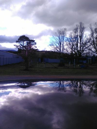 And here is the original photo of roof reflection. Tree Sky Cloud - Sky No People Outdoors Nature Storm Cloud Storm Reflection Nature_collection Beauty In Nature Dramatic Sky Close-up Mirror Storm Clouds Gathering Accidental Shot Roof Of My Car Cars Nature At Her Best! No Filter No Edit Just Photography