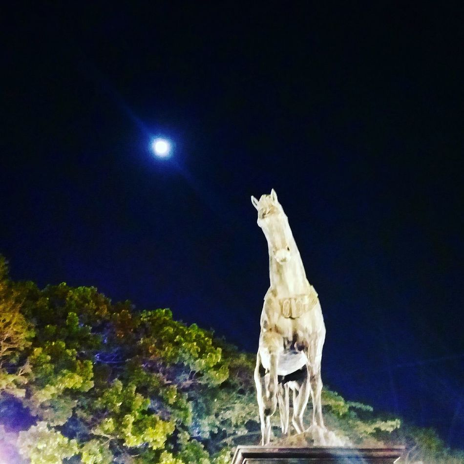 Night Moon No People Sky Statue Sculpture Outdoors Famous Tourist Attractions Lighting Equipment Kalaghoda🐴 Kalaghodaartfestival Illuminated City Tourism Low Angle View EyeEmNewHere