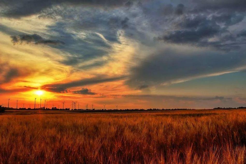 Sonnenuntergang Check This Out Sky Sun Naturfoto