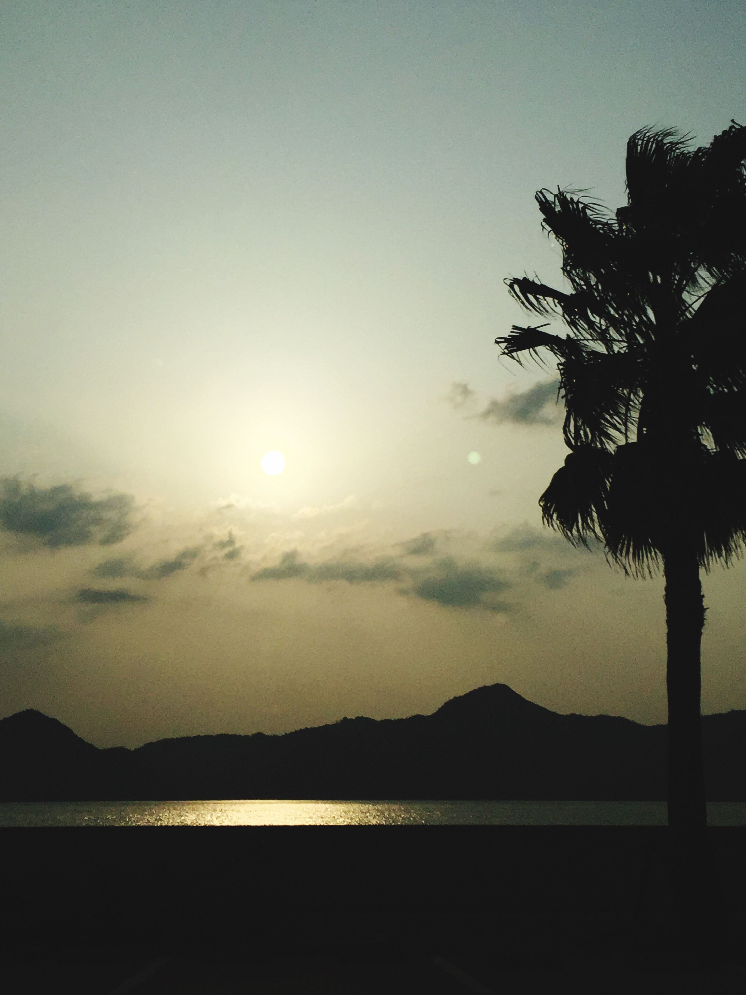 sunset, sky, reflection, nature, water, tree, tranquility, lake, beauty in nature, outdoors, scenics, no people, sun, day