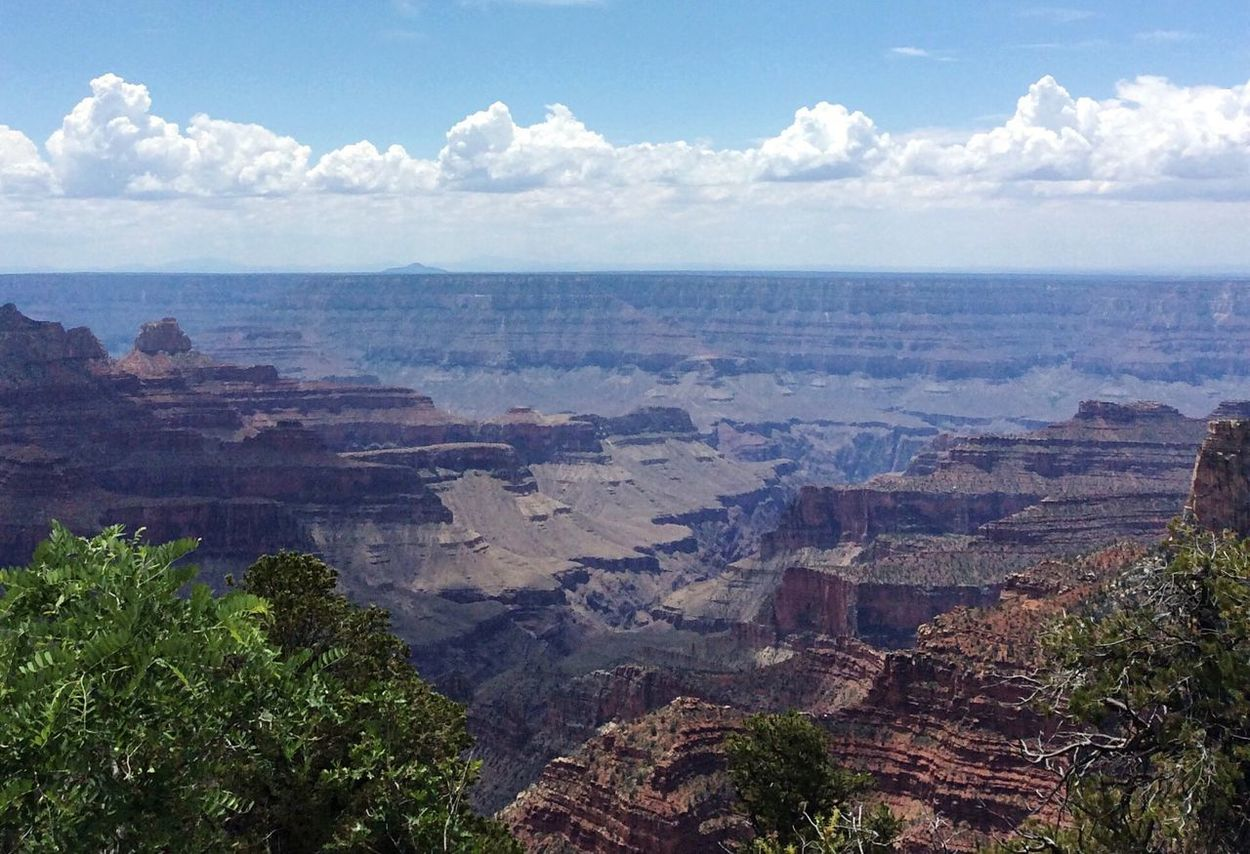 North Rim of the Grand Canyon Nature Scenics Beauty In Nature Tranquility Tranquil Scene Sky Outdoors Day No People Landscape Cloud - Sky High Angle View Physical Geography Tree Idyllic Grand Canyon North Rim Grand Canyon National Park yUnited States Grand Canyon Az Been There. Lost In The Landscape