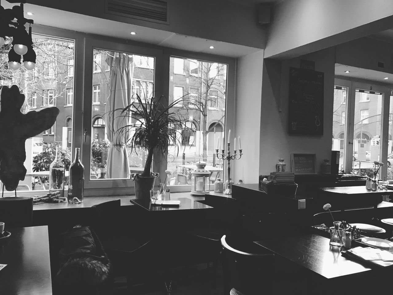In a Restaurant Indoors  Table Window Home Interior Tree No People Chair Dining Table Day Restaurant Lifestyle Photography Lifestyle Black & White Black And White Street Life Hannover Indoor Life Scenics Germany Drinking Eating Tables Room Decor Enjoying Life