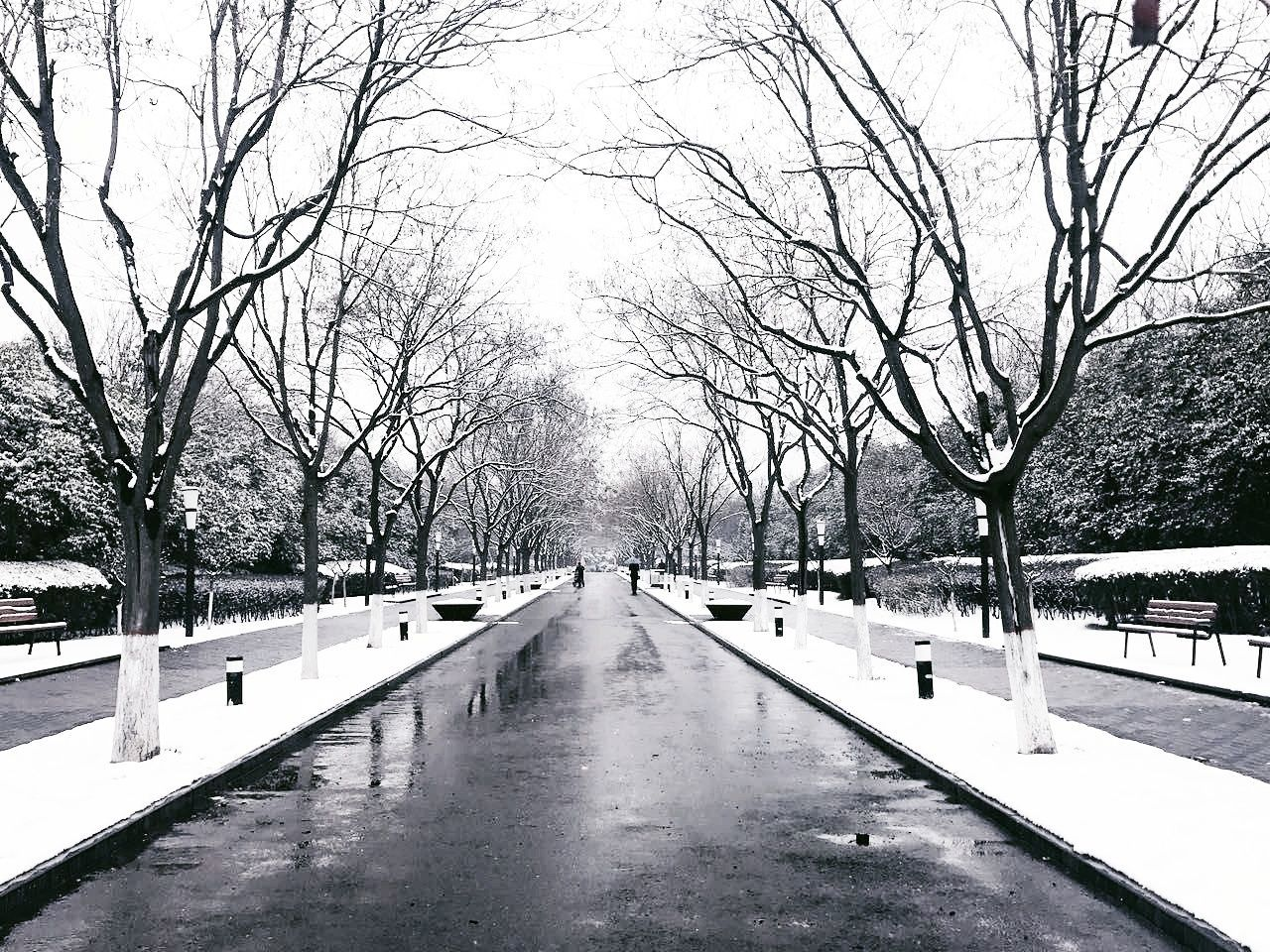 Cold Temperature Snow Winter Bare Tree Weather Nature Day Outdoors Beauty In Nature Fame Canon Trip Views Phoyography VSCO Skylight City Life Iphonography Architecture Photography