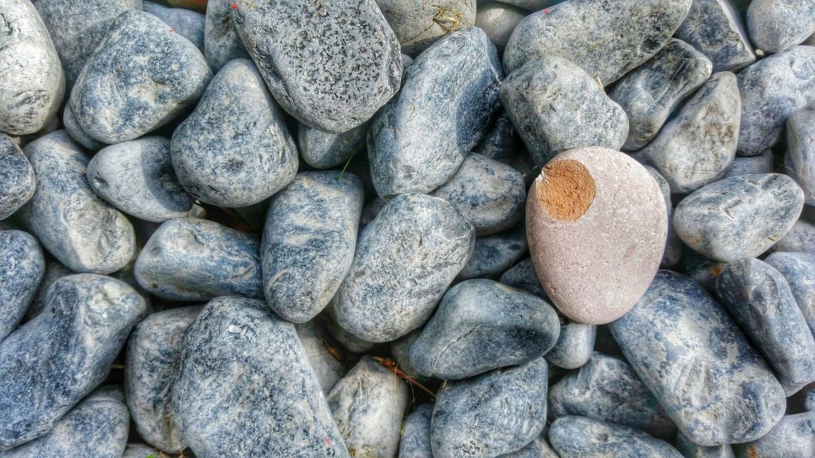 Outdoor Pictures Stone Stein Black Stone Brown Stone Stones Stones Effect Broken Stone Nature In My Garden The Beauty Of Nature Simplicity Make The Difference Eye Em Photo My First Stone