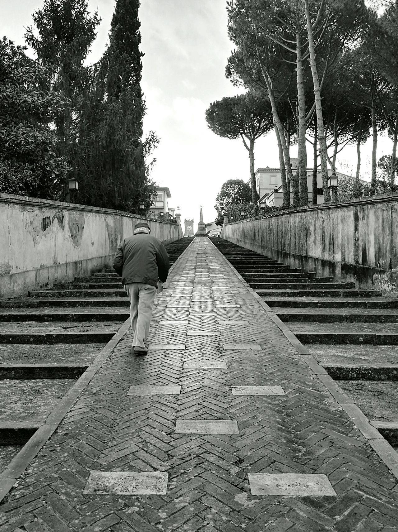 It's Cold Outside EyeEm Gallery EyeEm Best Shots - Black + White Black And White Bianco E Nero Grey Grigio Streetphotography Streetphoto_bw Old Man Signore Walking Alone... Alone Solo Camminando Three Alberi EyeEm Nature Lover Scale  Stairs Nofilter PhonePhotography Photography HuaweiP8 Capture The Moment