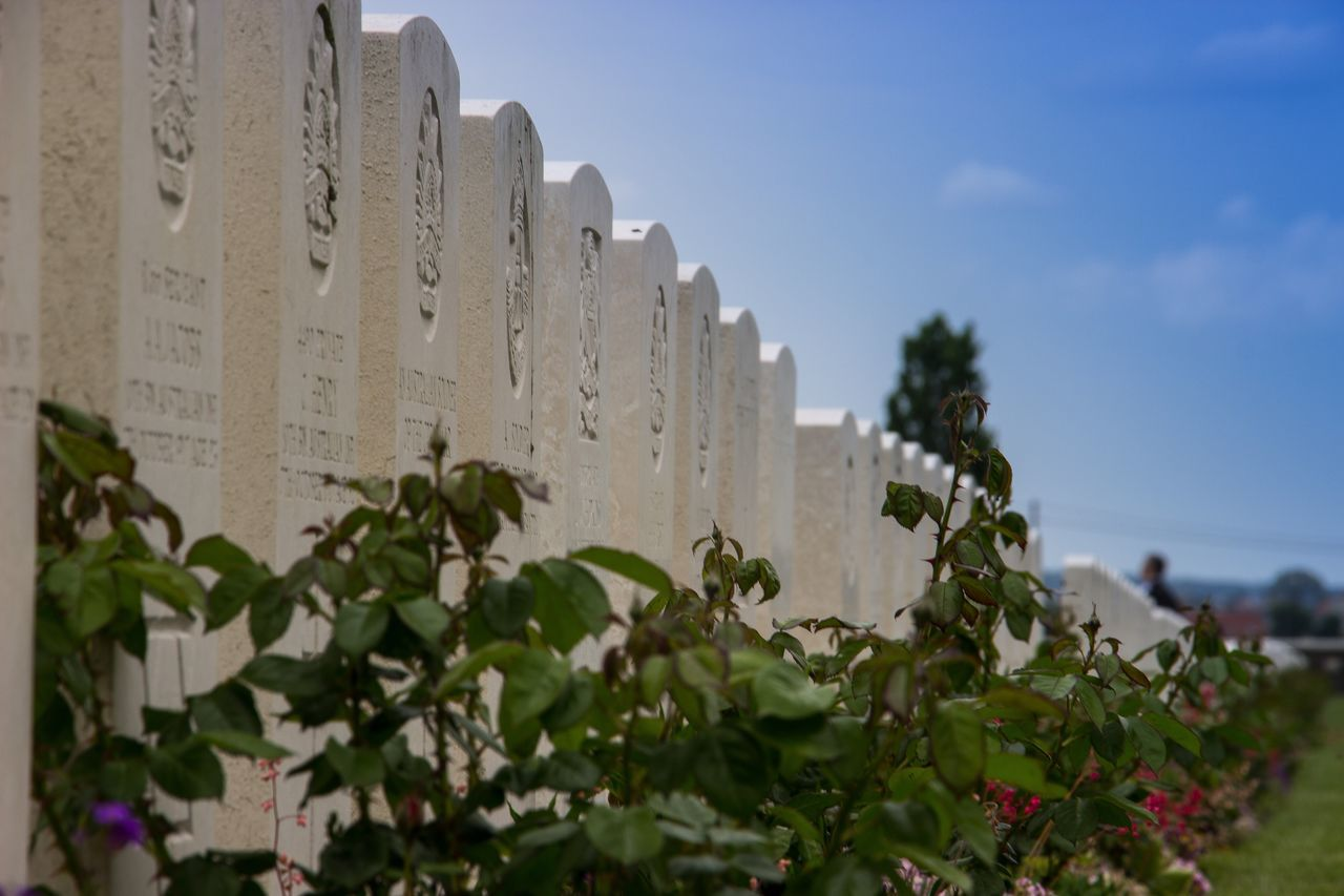 Gone but never forgotten. Plants And Flowers Plant Leaf Growth Architecture Memorial Ww1 France Sky