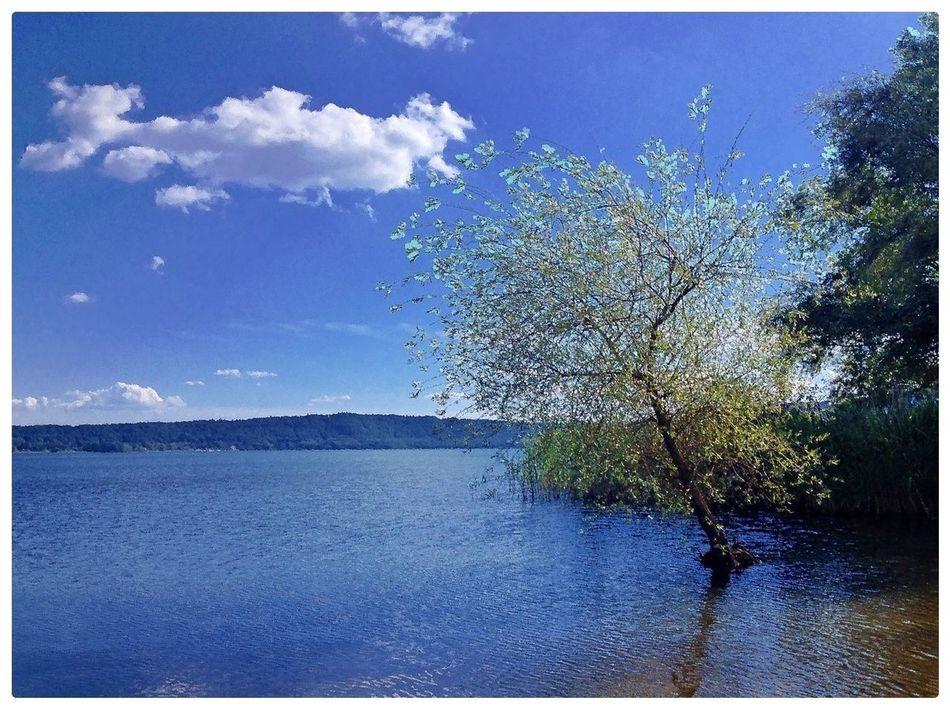 Water Reflections Lago Di Vico Caprarola Viterbo Italia