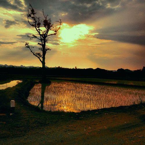 Sunset Beauty BeautifulSavior Beautiful SEA picoftheday nature creation creator instamadness imadeit intothejungle
