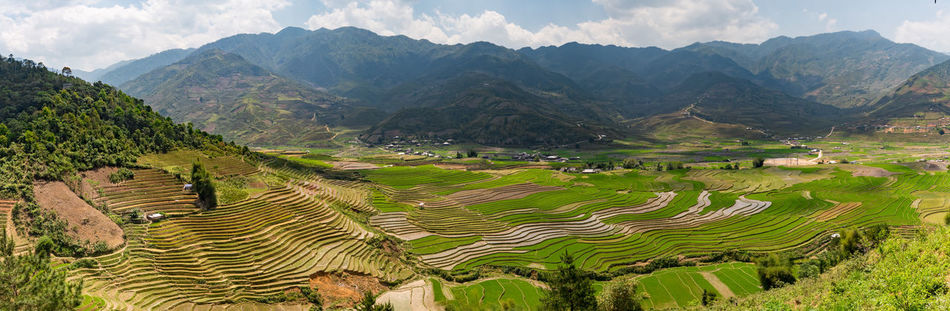 Agriculture Beauty In Nature Field Landscape Mountain Mountain Range Mu Cang Chai No People North Vietnam Outdoors Panorama Panorama View Panoramic Landscape Panoramic Photography Panoramic View Rice - Cereal Plant Rice Field Rice Paddy Rice Paddy Rice Terraces Terraced Field Viet Nam Vietnam